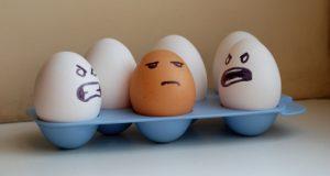 Egg-Racism