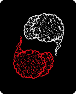 brain-2361147_640
