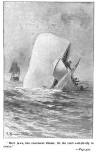 382px-Moby_Dick_p510_illustration