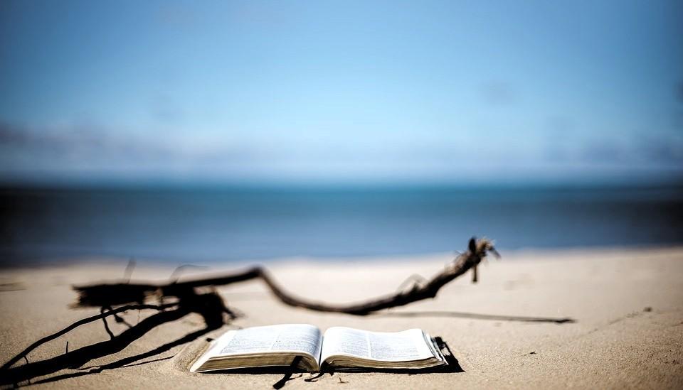 beach-1866992_960_720